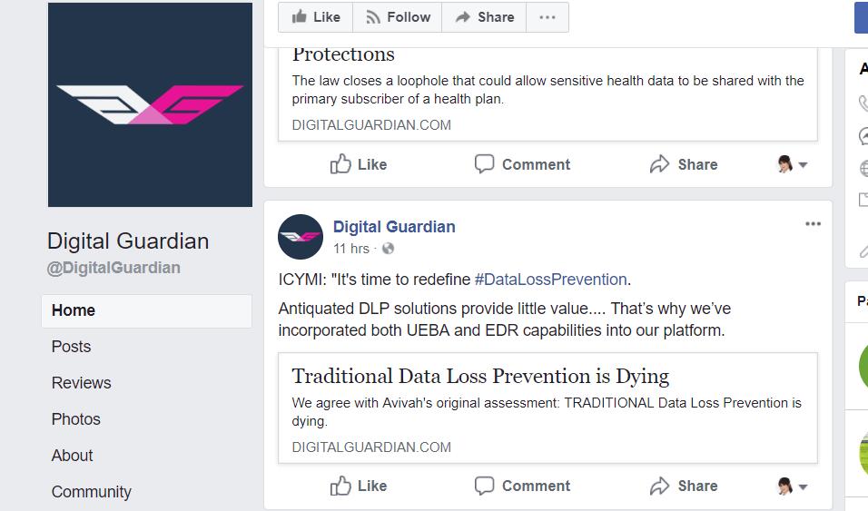 Digital Guardian Alternative